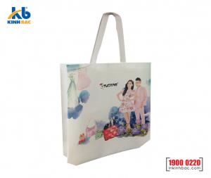 Túi vải không dệt quà tặng - TQT05