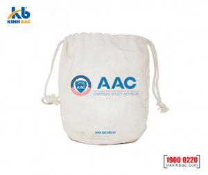 Túi vải không dệt du học - TDH07