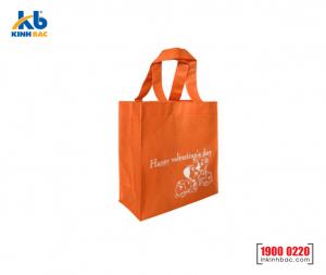 Túi vải không dệt quà tặng - TQT15
