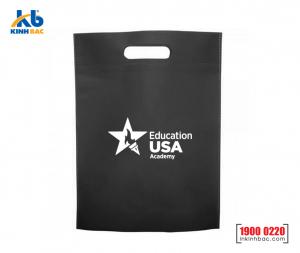 Túi vải không dệt du học - TDH10