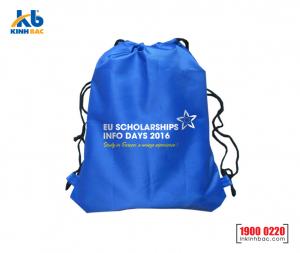 Túi vải không dệt du học - TDH13