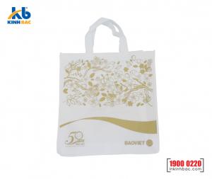 Túi vải không dệt quà tặng - TQT09