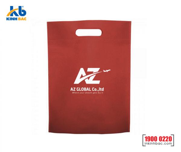 Túi vải không dệt du học - TDH09