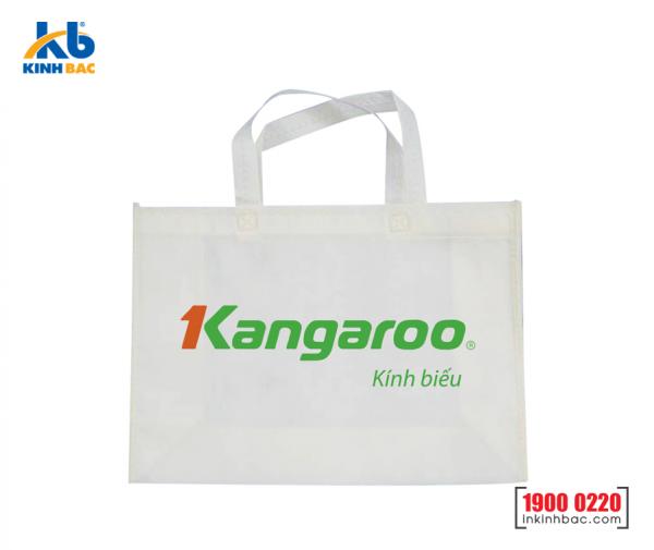 Túi vải không dệt quà tặng - TQT10