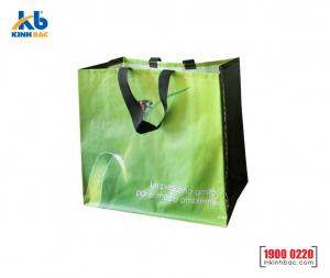 Túi vải không dệt siêu thị - TST07