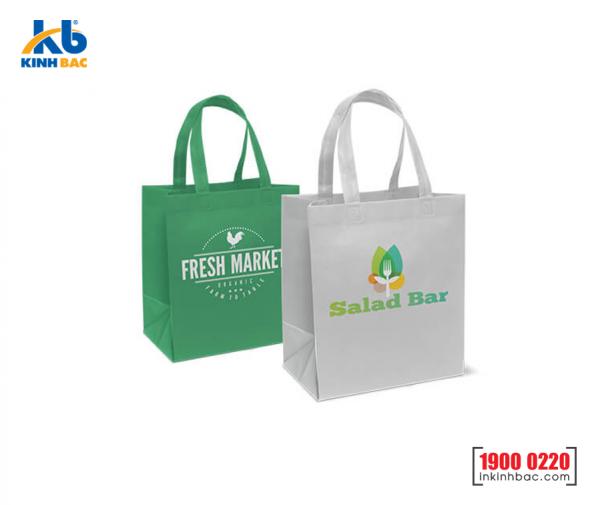 Túi vải không dệt siêu thị - TST02