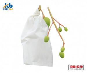 Túi bao trái cây - BTC01