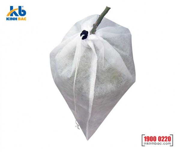 Túi bao trái cây - BTC02