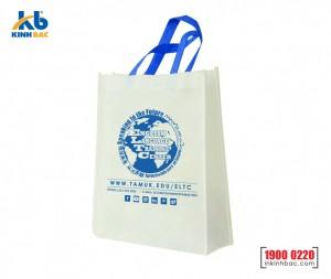 Túi vải hình hộp có hông - TCH42