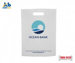 Túi vải không dệt ngân hàng - TNH13